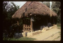 Thatched open-framed watermill building with wheel
