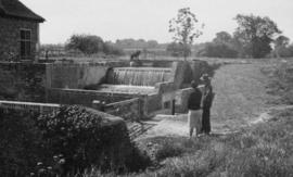 Weirs, dog and owners, Andwell Mill, Mapledurwell and Up Nateley