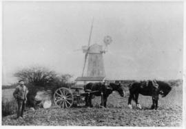 Barking Mill, Barking, with horses and cart