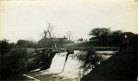 Weir and lady posed with dog, watermill, Thornton le Street