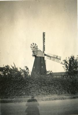 Cobbin's Mill, Downham Road, Ely, behind hedgerow