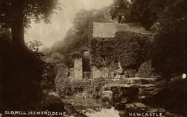 Watermill, Jesmond, Newcastle, from down river