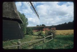 Part of wooden base and thatched smock of smock mill, with farm buildings in background