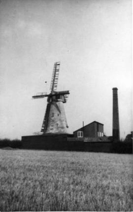 Tower mill, Wingham, with building and chimney