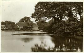 Mill and Pond, Cann