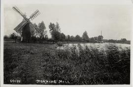 Smock mill, Horning Ferry, and broad