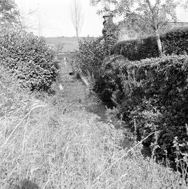 Detail of sluice and mill race, Barcombe Farm, Alton Pancras