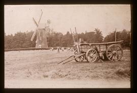 Haymaking scene, tower mill, Bidborough