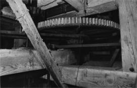 Great spur wheel