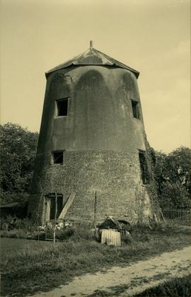 Three-storey tower with corrugated iron roof, Mile End Farm Mill, Therfield, Reed
