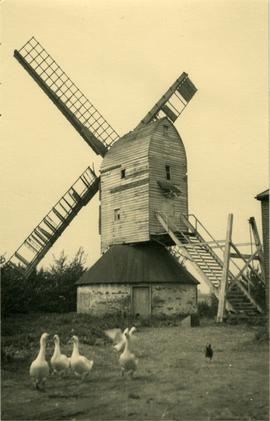 Post mill, Hartest, with geese in front