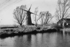 St Benet's Abbey Mill, Horning, derelict