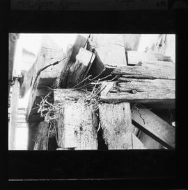 Decaying timbers, Mill Green Mill, Ingatestone