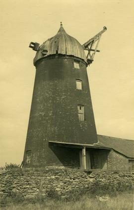 Tower mill, Werrington, with later outbuilding