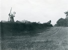 Tower mill, Sible Hedingham